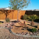 Top Desert Landscaping Ideas For Your Arizona Home!